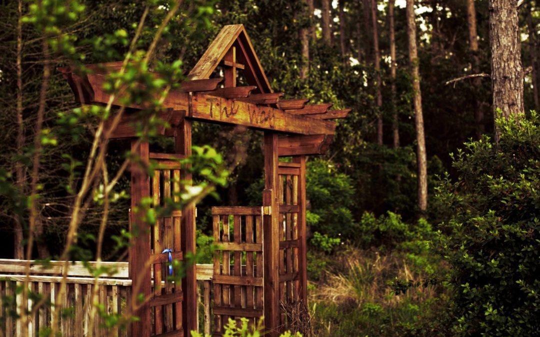 PBUMC Nature Trail: The Way