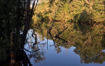 The Perdido River Paddle Trail