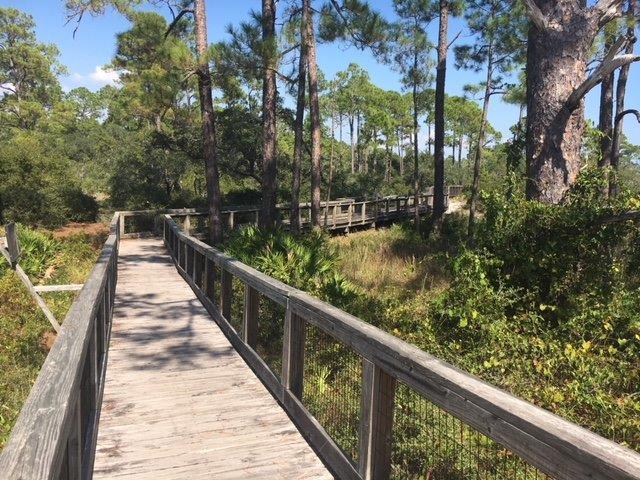 Hiking Trails in Perdido